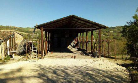 Adotta una stalla, un caso esemplare di solidarietà dal basso verso gli allevatori terremotati