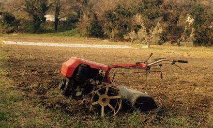 Da disoccupato a imprenditore: la sfida di un trentenne ascolano nel settore della bioagricoltura