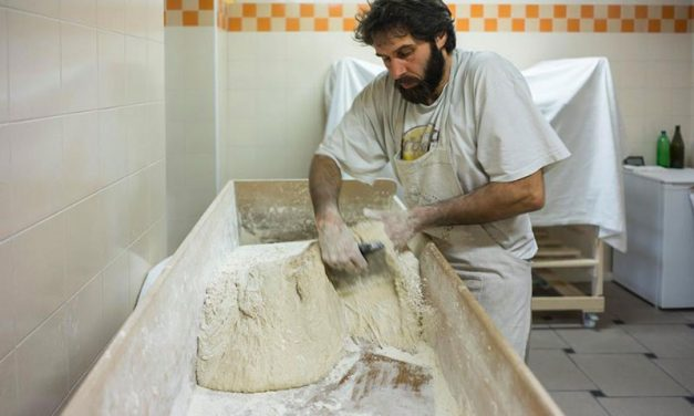 Daniele Ciabattoni panificazione farina di grano antico