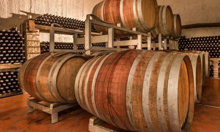 Agricoltura biodinamica, come preservare l'identità naturale del vino: la storia delle Cantine Capecci