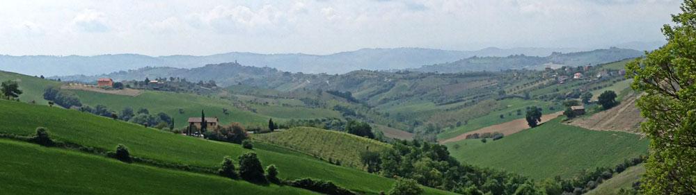 Panorama delle Cantine Capecci