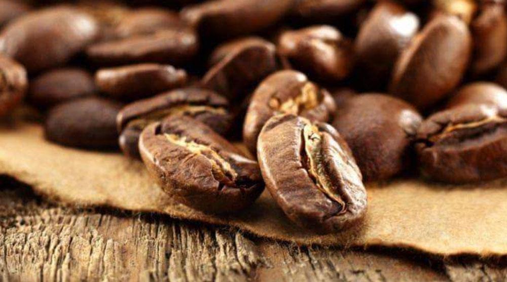 caffè torrefazione Orlandi Passion