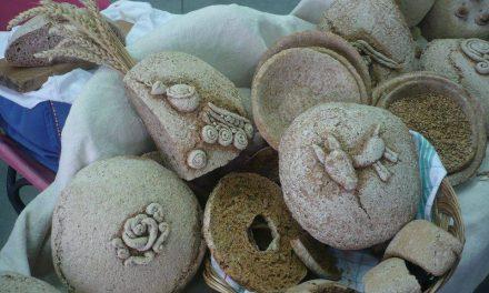 Piatti di pane, un ritorno alla terra completamente ecosostenibile e commestibile