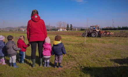 Agribimbo, l'unico asilo nido Piceno in cui i bambini possono stare a stretto contatto con la natura