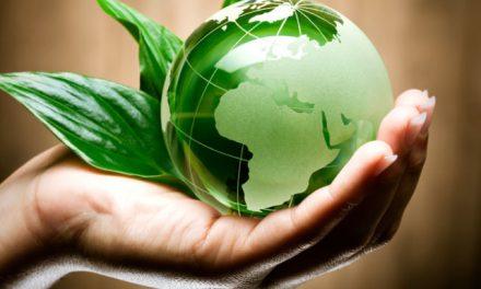 Elezioni politiche, chi è veramente attento all'ambiente e cosa prevede l'Agenda ambientalista 2018?