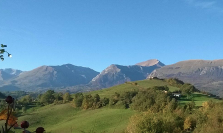 Dalla Nuova Zelanda ad Amandola, la sfida agricola di Andrea Servili nelle zone del terremoto
