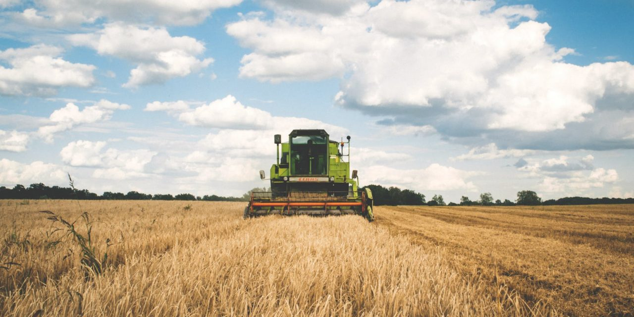 L'agronomo Tommaso Ciriaci spiega il sostegno agli investimenti nelle aziende agricole del Psr Marche 2014-2020
