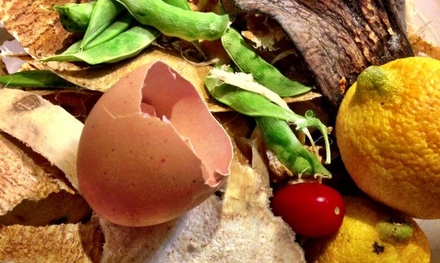 Sprechi alimentari, ecco le soluzioni per recuperare il cibo di scarto secondo Coldiretti