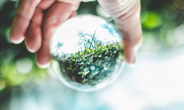 La Provincia di Ascoli organizza un corso sulla tutela ambientale