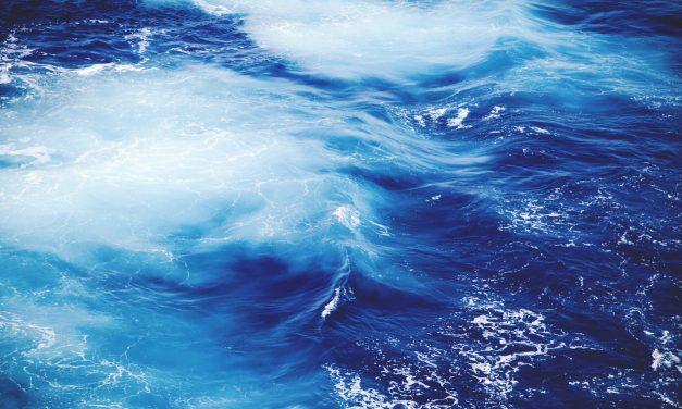 Salpa Goletta Verde, ecco i numeri di Mare Monstrum di Legambiente