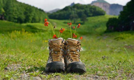 Ecoturismo: come ridurre il nostro impatto sull'ambiente