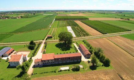 Agroforestry, un convegno per conoscere il mondo dell'agricoltura tra innovazione e tradizione