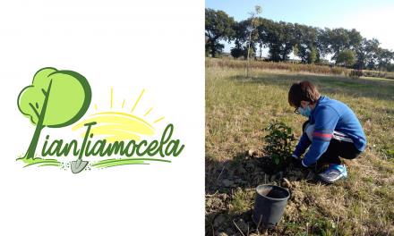 Piantiamocela: il progetto di piantumazione nato a Potenza Picena (MC) durante il lockdown