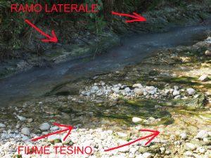 fiume tesino